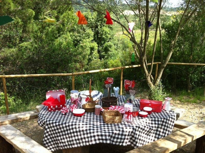celebraciones picnic