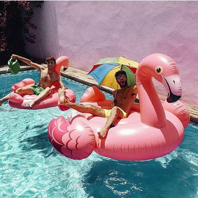 Los mejores flotadores para la mejor fiesta en la piscina