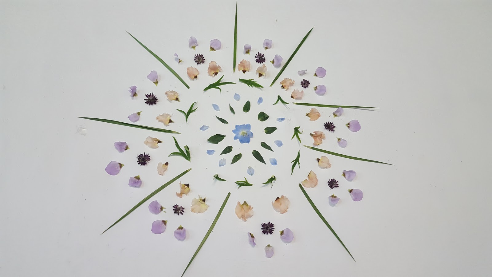 mándala de flores
