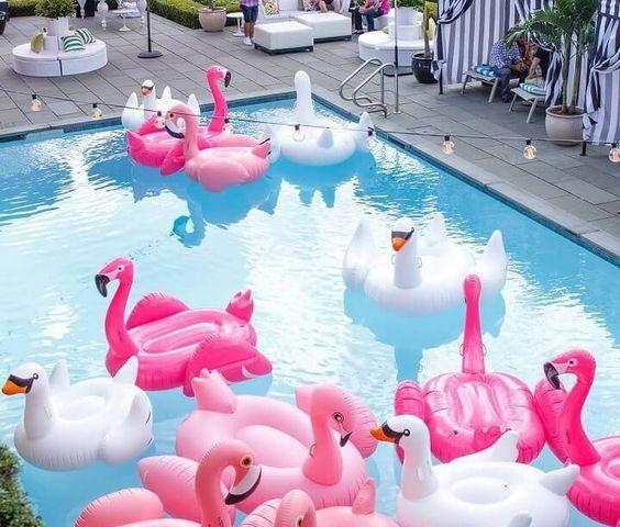 fiesta en la piscina 1